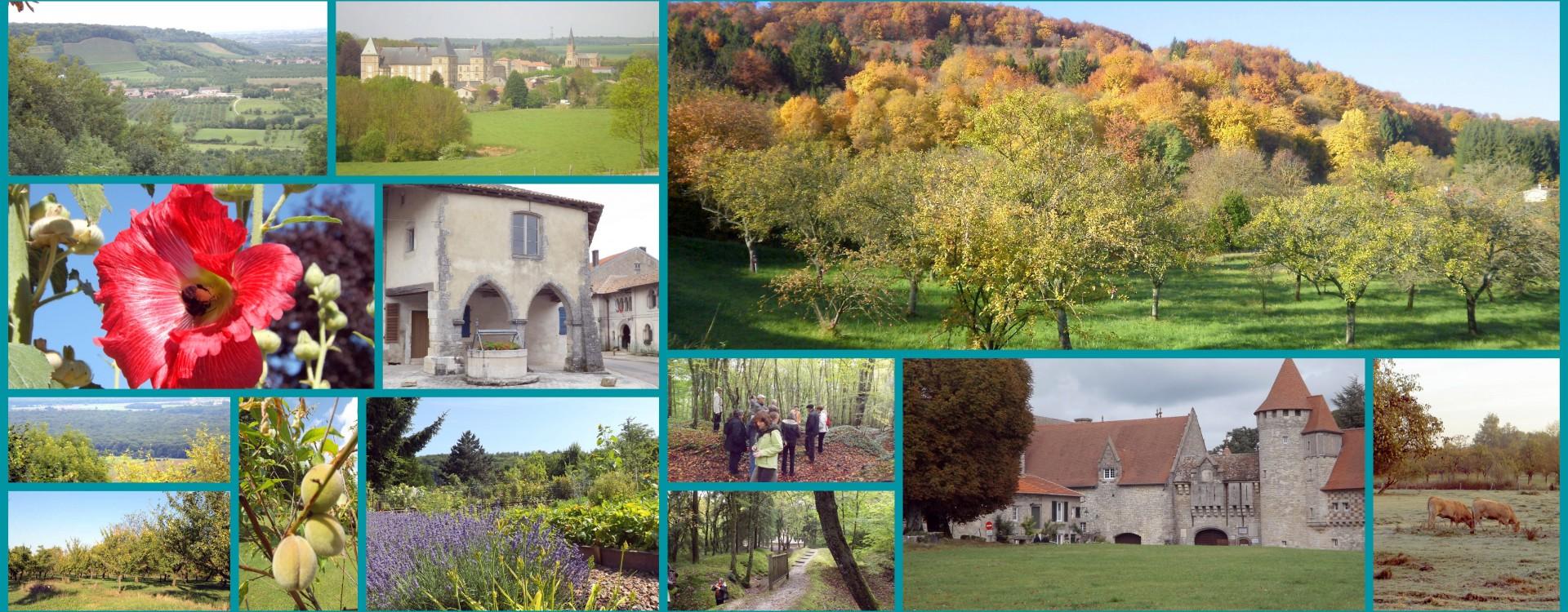 Les Côtes de Meuse et de la plaine de la Woëvre