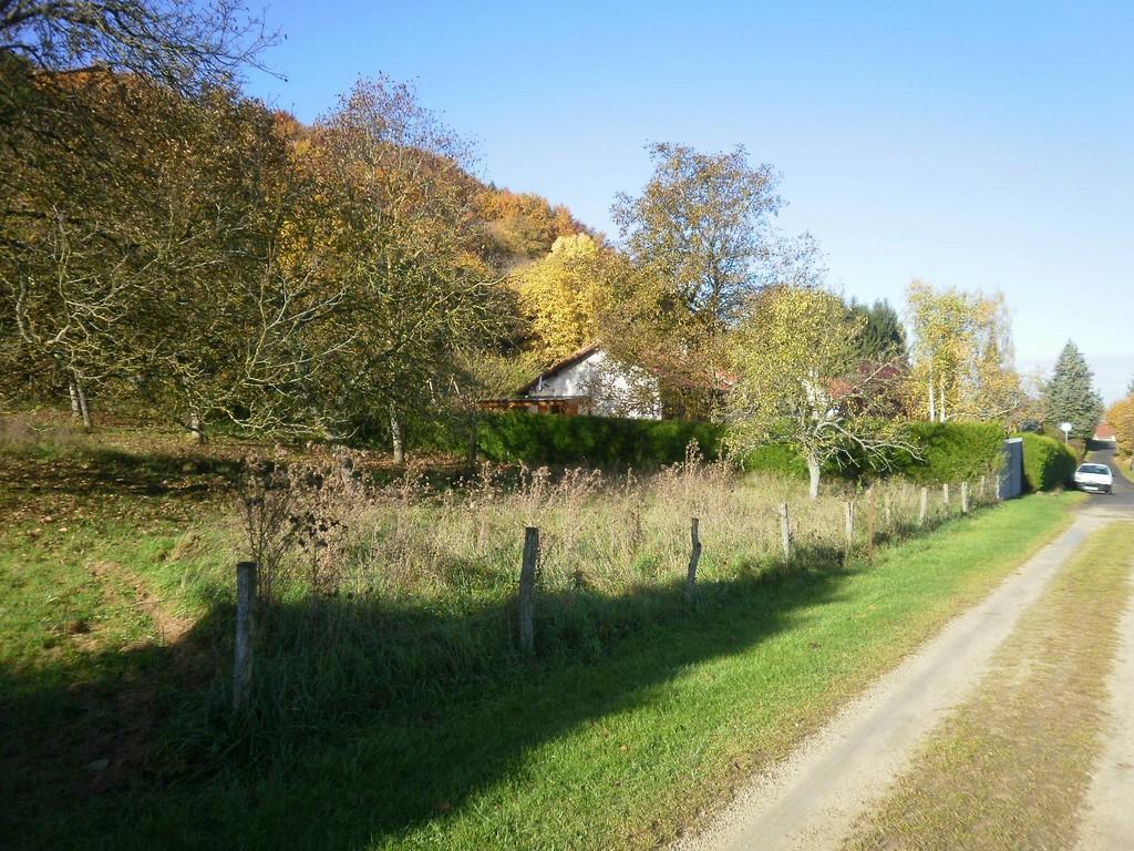 Chemin de balade à Thillot